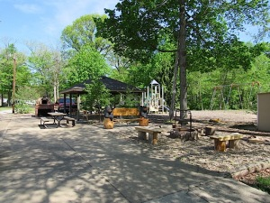 Comment fire pit and playground