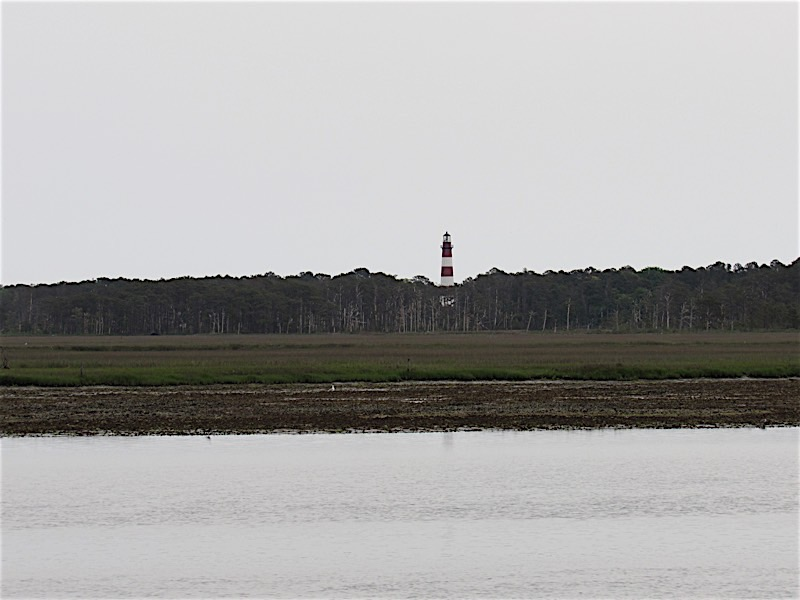 Lighthouse on Chincoteague Island