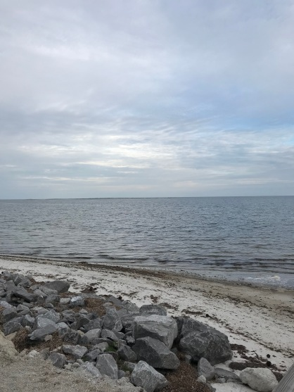 View of the gulf