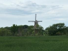 """""""De Zwaan"""" (The Swan)"""