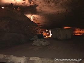 Fantastic Caverns Speakeasy